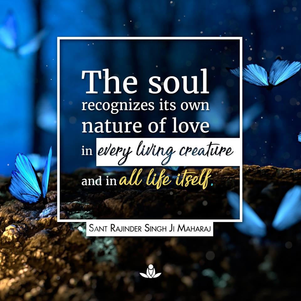 soul-recognizes-own-nature