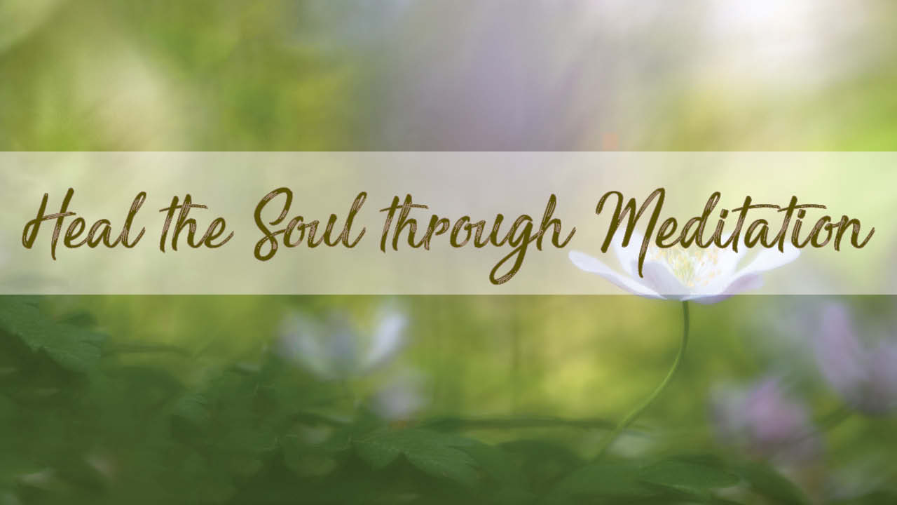 Garden for Heal Soul Meditation Rajinder Singh