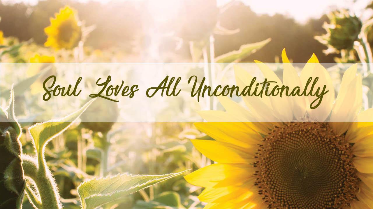 Sunflowers for Unconditional-love-Rajinder-meditation