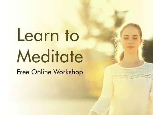 Learn to Meditate - free online workshop
